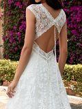 WEDDING DRESSES Pronovias Ederne 2020